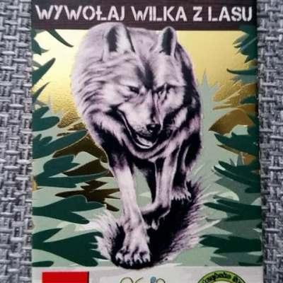 Kto wywołał wilka z lasu?!